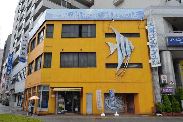西大須交差点角にある金魚・熱帯魚・錦鯉の店「大須フィッシュ」