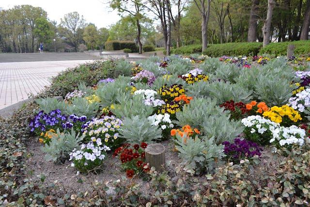 名城公園入口近くにたくさんの種類の花が植えられている「モデルガーデン」