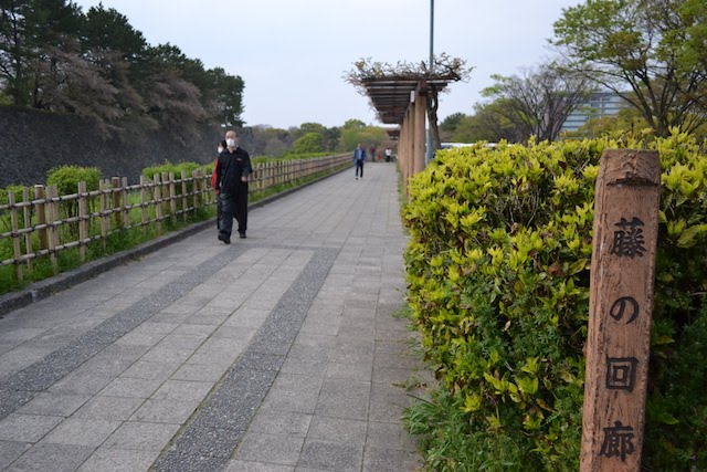 名古屋城東の外堀沿いに設けられた遊歩道「藤の回廊」