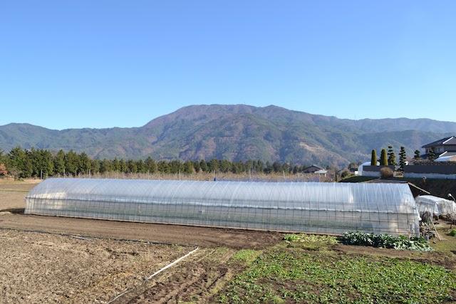 伊那本郷駅東側の農園