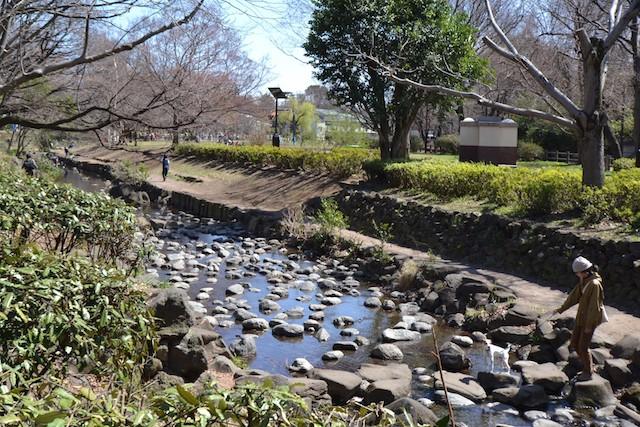 源流近くの神田川