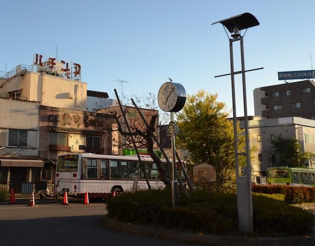 飯能市のシンボルを目指す「ザクロの木」